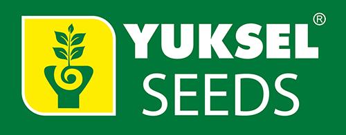 Yuksel seeds
